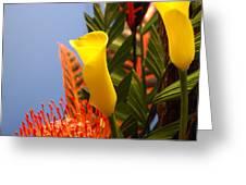 Yellow Calla Lilies Greeting Card