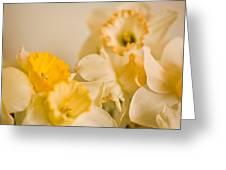 Yellow Daffodils Greeting Card by John Holloway