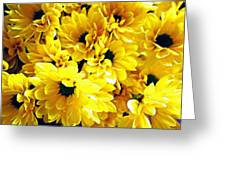 Yellow Daisies Greeting Card