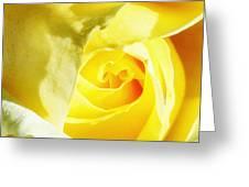 Yellow Diamond Rose Palm Springs Greeting Card