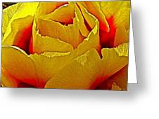 Yellow Engelmann Prickly Pear On Chihuahuan Desert Trail In Big Bend National Park-texas   Greeting Card