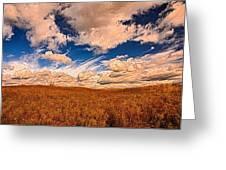 Yellow Field Dramatic Sky Greeting Card