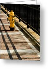 Yellow Fire Hydrant - Pittsfield - Massachusetts Greeting Card