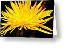 Yellow Flash Greeting Card