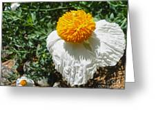 Yellow Flower - 02 Greeting Card by Gregory Dyer
