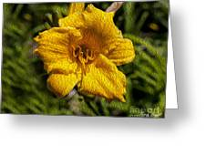 Yellow Flower In Oil Greeting Card