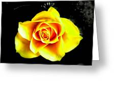 Yellow Flower On A Dark Background Greeting Card