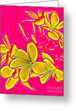 Yellow Flowers On Pink Background Greeting Card