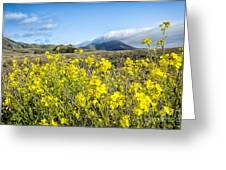 Yellow Foreground Greeting Card