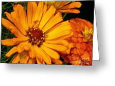 Yellow Gold Flowers Greeting Card