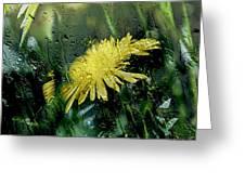 Yellow In The Rain Greeting Card