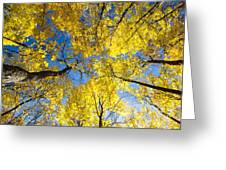 Yellow In The Sky Greeting Card