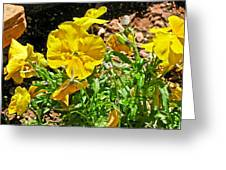 Yellow Flower In The Sun Greeting Card