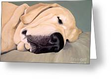 Yellow Lab - A Head Pillow Is Nice Greeting Card