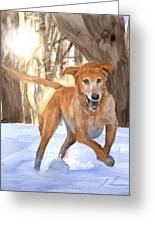 Yellow Lab Dog In Snow Watercolor Portrait Greeting Card