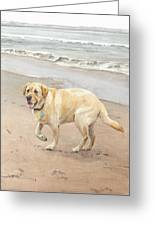 Yellow Lab On Beach Watercolor Portrait Greeting Card