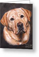 Yellow Labrador Portrait - Dark Yellow Dog Greeting Card