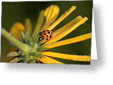 Yellow Lady - 2 Greeting Card