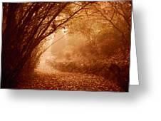 Yellow Leaf Road Greeting Card