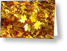 Yellow Leaves Greeting Card