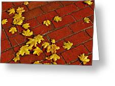 Yellow Leaves On Red Brick Greeting Card