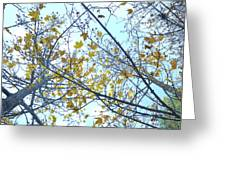 Yellow Leaves Vintage Greeting Card