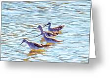 Yellow Legs Quartet Photo Art Greeting Card