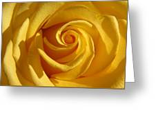 Yellow Light Greeting Card