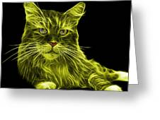 Yellow Maine Coon Cat - 3926 - Bb Greeting Card