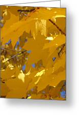 Yellow Maple Leaves Greeting Card