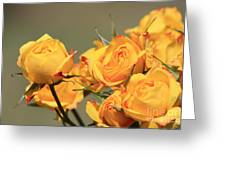 Yellow Mini Rose's Closeup Greeting Card
