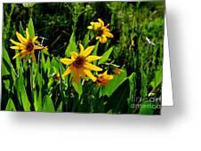 Yellow Mountain Flowers Greeting Card