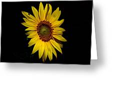 Yellow On Black Greeting Card