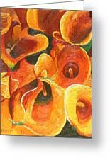 Yellow-orange Calla Lilies Greeting Card
