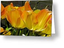Yellow Greeting Card by Ralph Jones