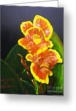 Yellow-red Canna Lily Greeting Card