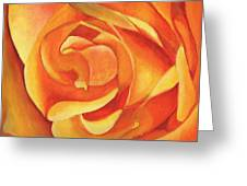 Yellow Rose #3 Greeting Card by William Killen