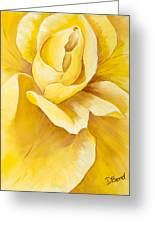 Yellow Rose Close Up Greeting Card