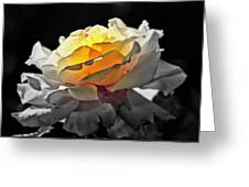 Yellow Rose Series - ...but Soul Is Alive Greeting Card