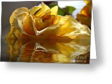 Yellow Rose Wet And Dry Greeting Card
