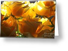 Yellow Roses And Light Greeting Card