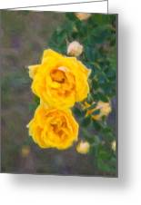 Yellow Roses On A Bush Greeting Card