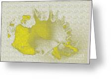 Yellow Shell Greeting Card
