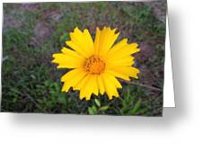Yellow Sunshine Greeting Card