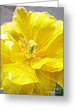 Yellow Tenderness Greeting Card