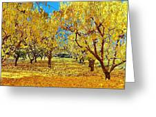Yellow Trees Greeting Card