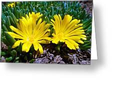 Yellow Twins Greeting Card
