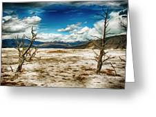 Yellowstone Deposits Greeting Card