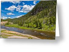 Yellowstone Gibbon River Greeting Card