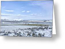 Yellowstone Landscape In Spring Greeting Card